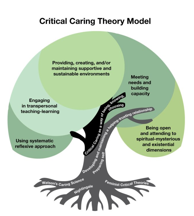 Falk-Rafael's Critical Caring model (used by permissoin)