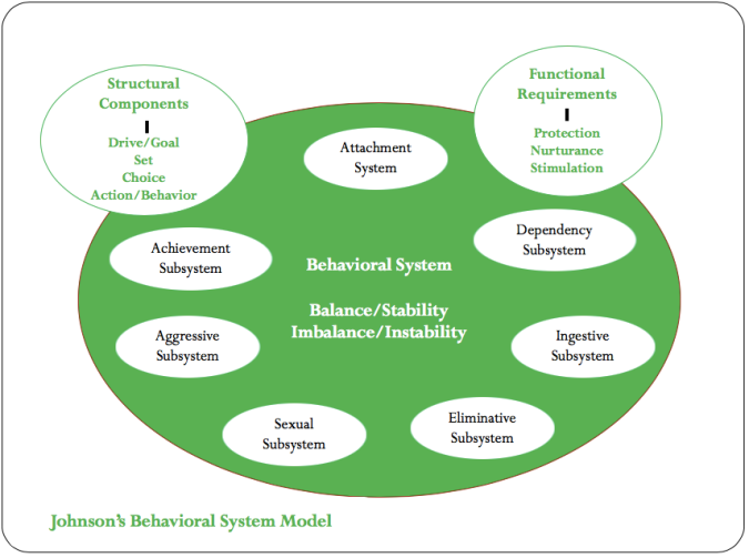 dorothy johnson behavioral system model