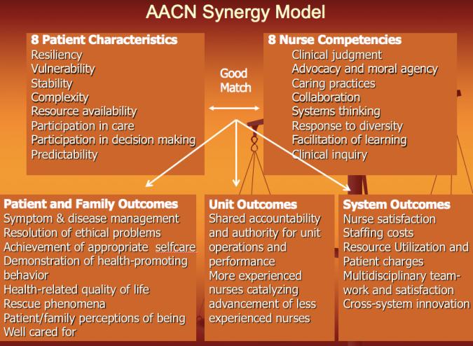 The Synergy Model Nursology